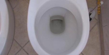 Как вымыть унитаз